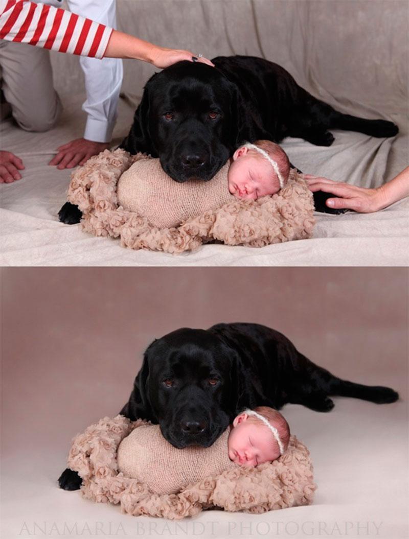 Ideias de como tirar foto de bebê-15