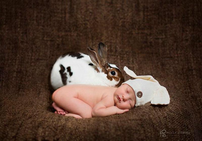coelhinho e o bebê